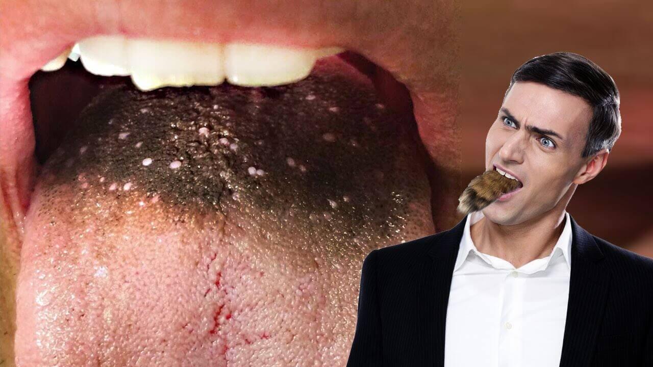 zwarte harige tong